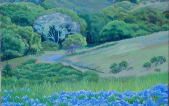 Carmel Valley Spring